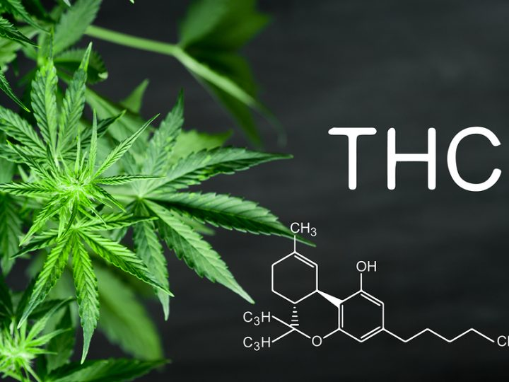 You can choose the best CBD Oil online.