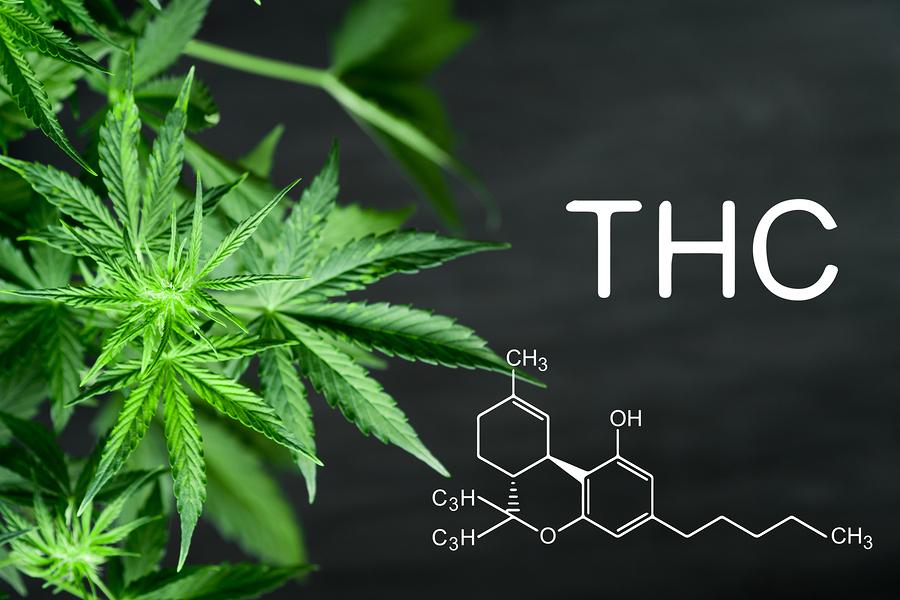 How Cannabis is Impacting Medical Treatment